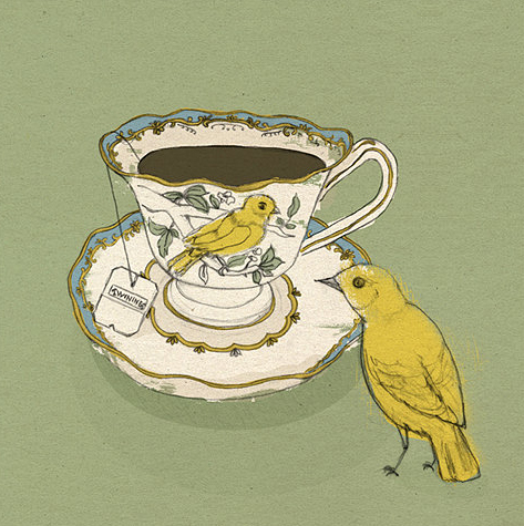 bird illustration tea